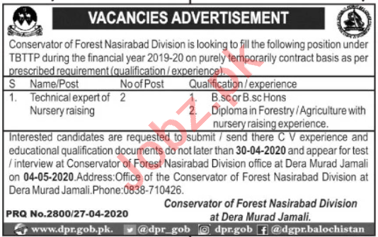 Forest Nasirabad Division Jobs Technical Export of Nursery