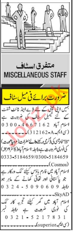 Pharmacist & Cook Jobs 2020 in Islamabad