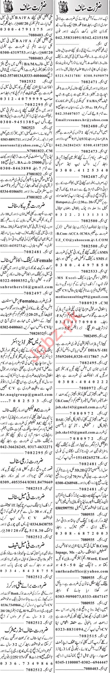 Jang Sunday Classified Ads 31st May 2020 for Management