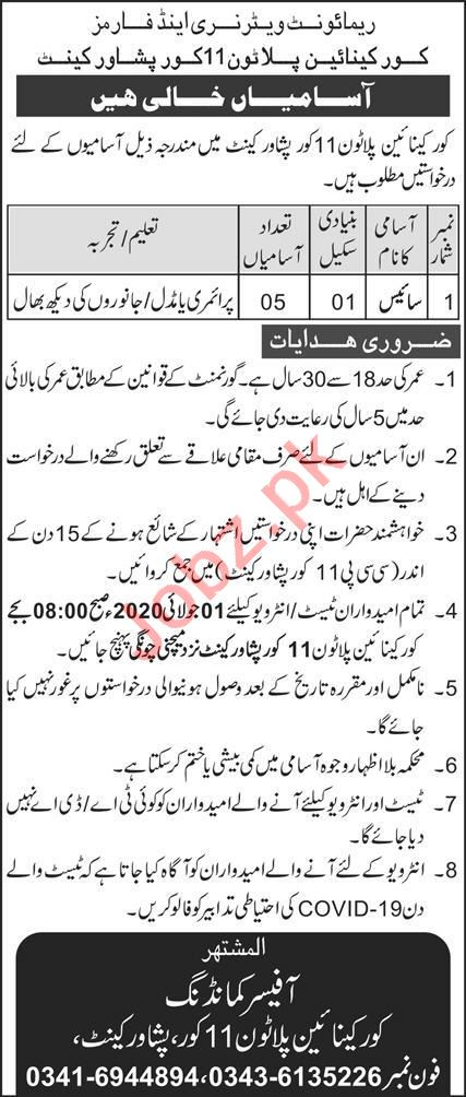 Pak Army Remount Veterinary & Farms Corps Peshawar Cant Jobs
