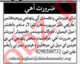 Medical Officer & Midwife Jobs 2020 in Karachi