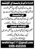 Pharmacist & Accountant Jobs 2020 in Lahore