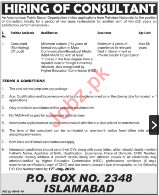 Consultant Monitoring Jobs in Public Sector Organization