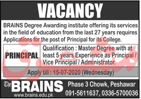 The Brains Institute Job 2020 For Principal in Peshawar KPK
