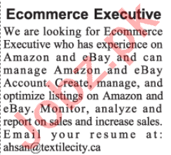 E Commerce Executive Jobs 2020 in Textile City Lahore