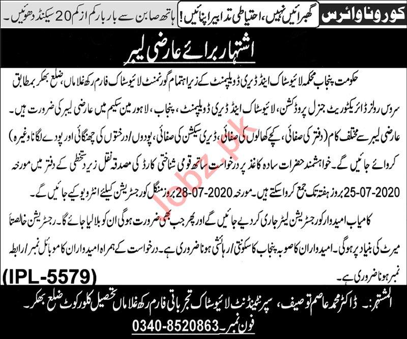 Punjab Livestock & Dairy Development Department Jobs 2020