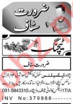 Teaching Staff Jobs 2020 in Peshawar