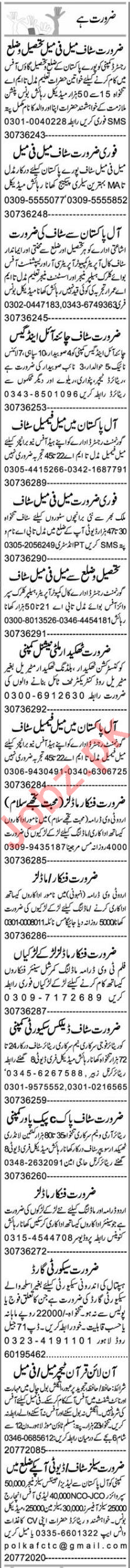 Insurance Agent & Office Assistatant Jobs 2020 in Lahore