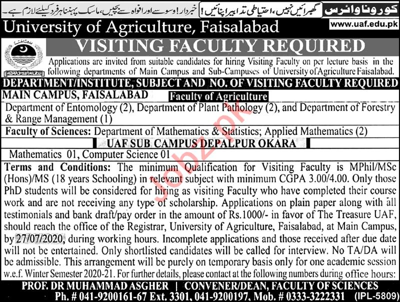 University of Agriculture Faisalabad UAF Jobs 2020