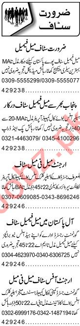 Marketing Manager & Finance Manager Jobs 2020 in Lahore