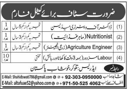 Cattle Farm Jobs 2020 For Khushab
