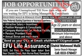 Efu Life Assurance Rawalpindi Jobs 2020 for Manager
