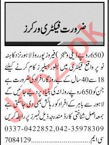Jang Sunday Classified Ads 12th July 2020 for Factory Staff