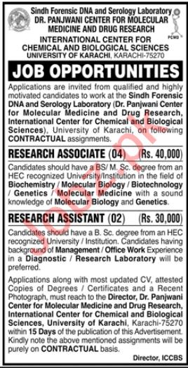 Dr Panjwani Center Molecular Medicine Jobs for Research Asst