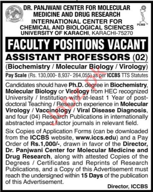 University of Karachi ICCBS Jobs 2020 for Professor
