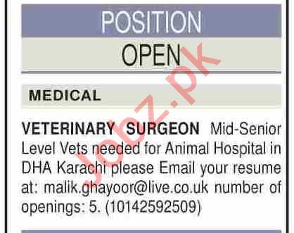 Veterinary Surgeon Jobs 2020 in DHA Karachi