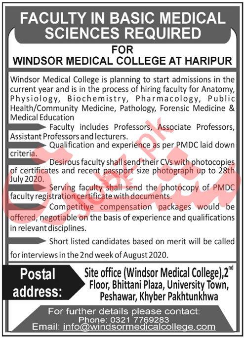 Windsor Medical College Haripur Jobs Professor & Lecturer