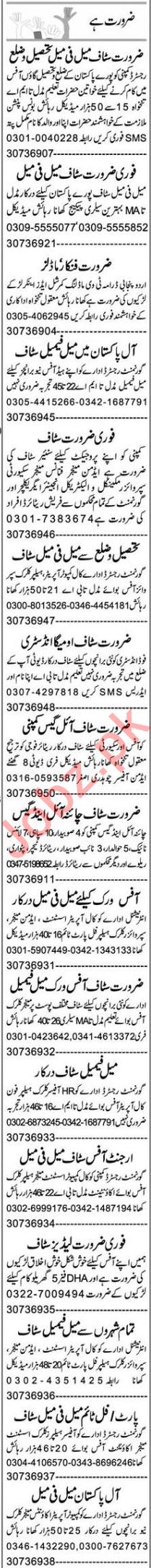 Recovery Officer & Admin Officer Jobs 2020 in Multan
