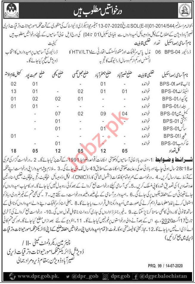 Animal Affairs & Dairy Department Naseerabad Jobs 2020