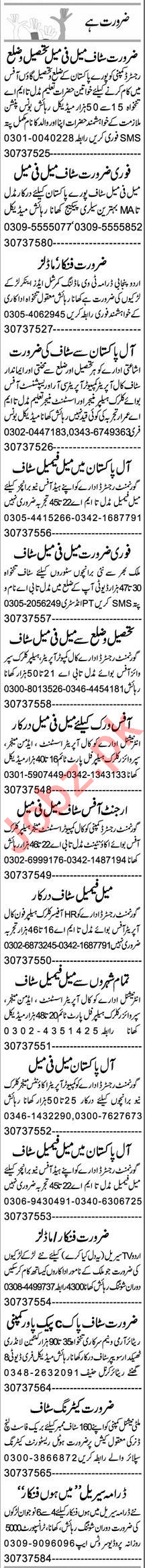HR Officer & Assistant Manager Jobs 2020 in Lahore