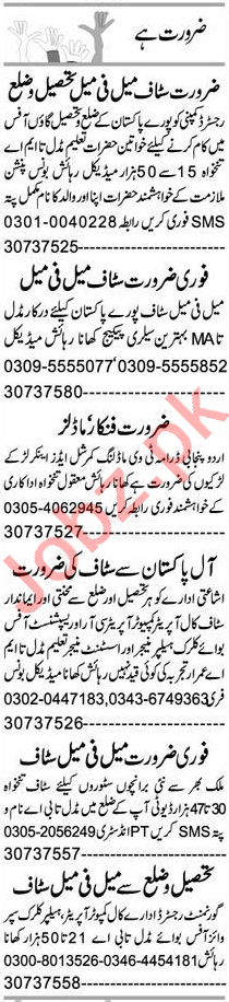 Office Assistant & Recovery Officer Jobs 2020 in Peshawar