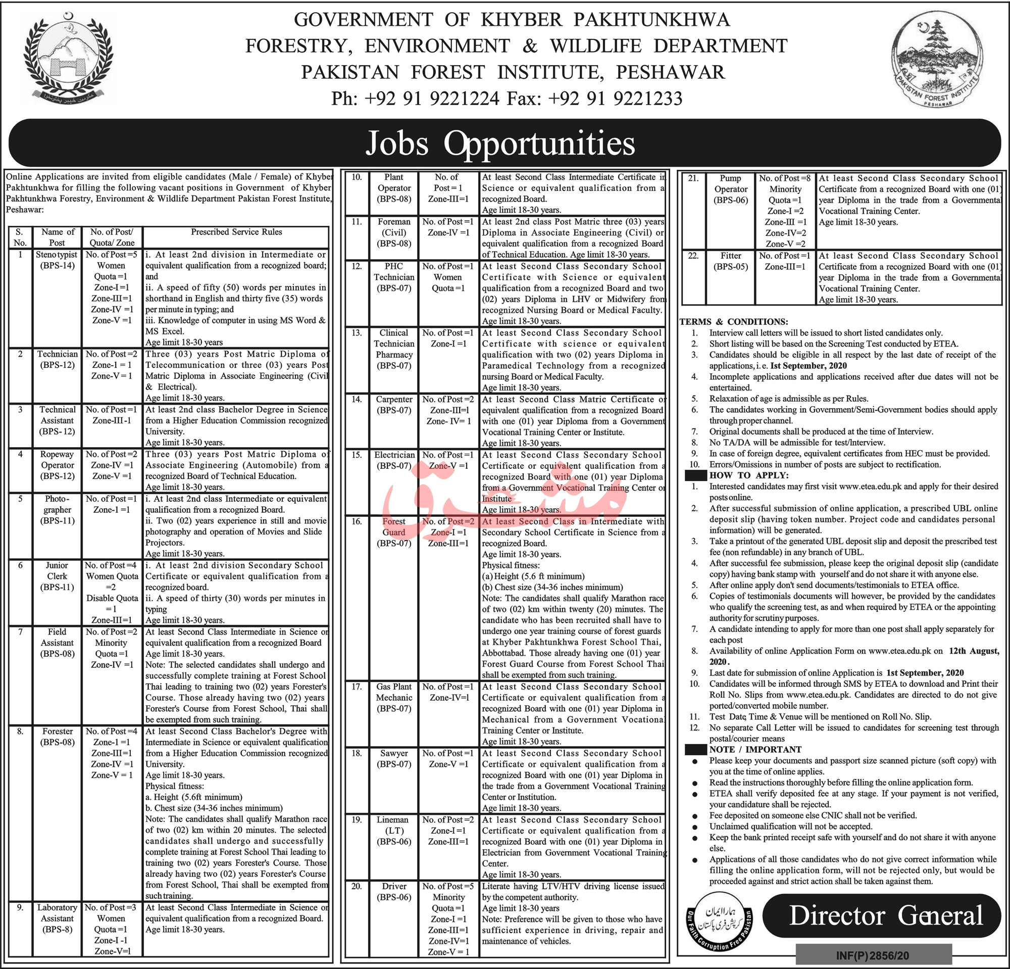 Pakistan Forest Institute Jobs 2020 in Peshawar KPK via ETEA