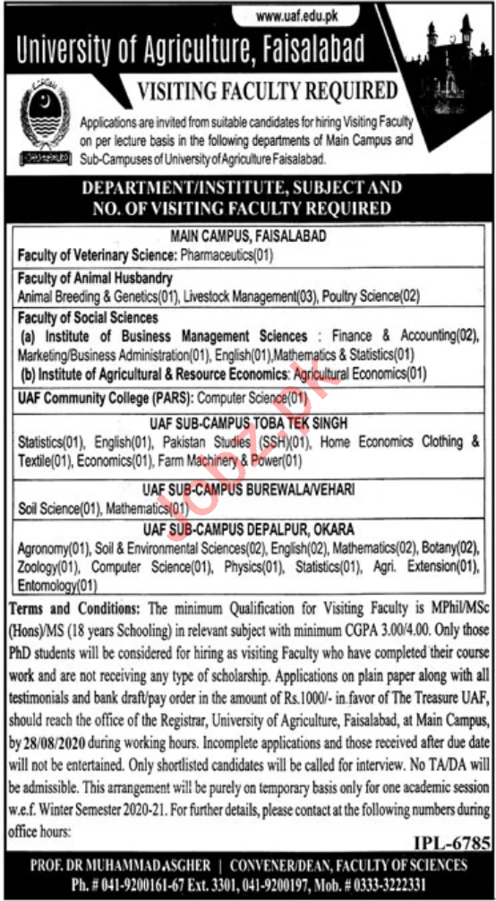 University of Agriculture Faisalabad UAF Jobs for Professors