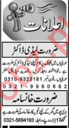 Lady Doctor & Cook Jobs 2020 in KPK