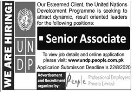United Nations Development Programme UNDP Job 2020