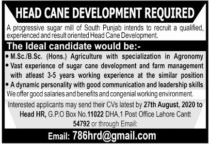 Head Cane Development Job 2020 in Lahore Cantt