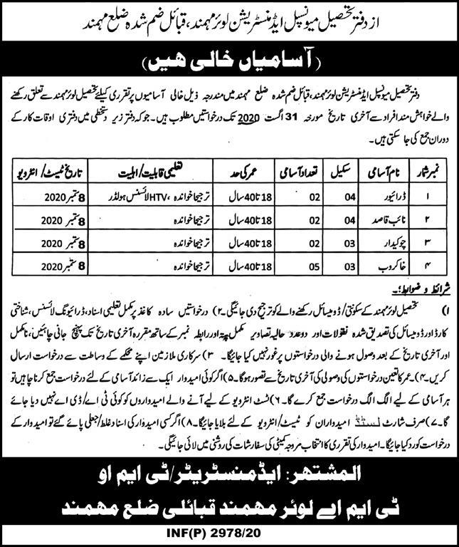 Tehsil Municipal Administration Office Jobs in Mohmand KPK