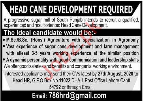 Head Cane Development Jobs 2020 in Lahore