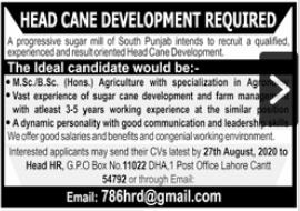 Head Cane Development Job 2020 For Lahore Cantt