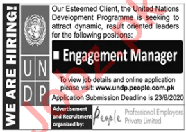 UNDP Jobs 2020 for Engagement Manager