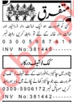 Cook & Driver Jobs 2020 in Peshawar