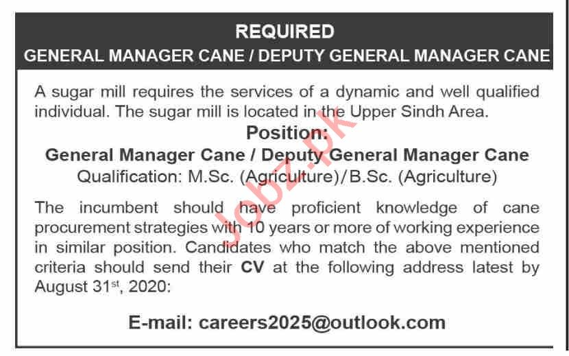 General Manager & Deputy General Manager Cane Jobs 2020