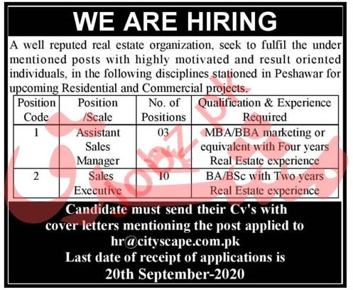 Assistant Sales Manager Jobs 2020 in Cityscape Housing