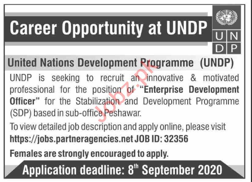 UNDP Jobs 2020 for Enterprise Development Officer
