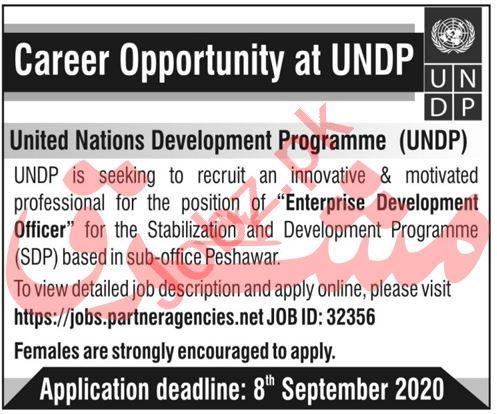 UNDP 2020 Peshawar Jobs for Enterprise Development Officer