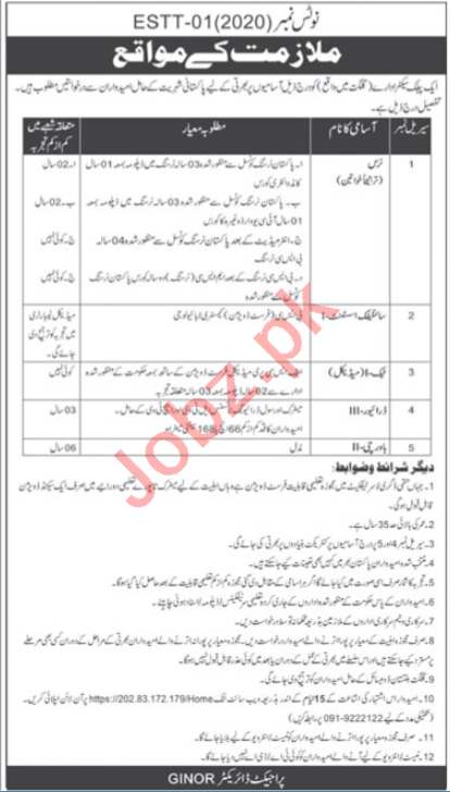 Gilgit Institute Nuclear Medicine Oncology GINOR Jobs 2020
