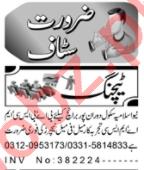 Male & Female Teachers Jobs 2020 in Peshawar