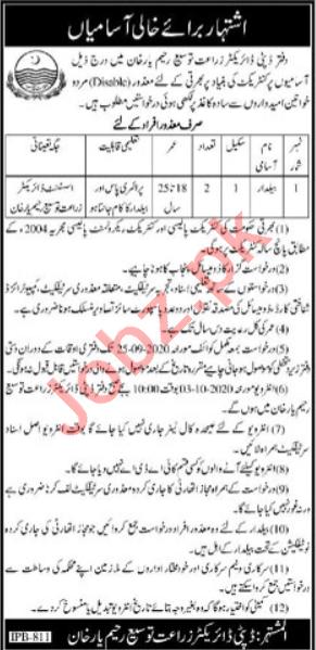 Agriculture Extension & Adaptive Research Rahim Yar Khan Job