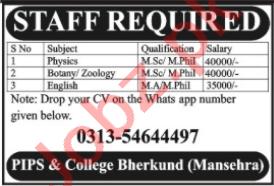 Lecturer Jobs 2020 in PIPS College Bherkund Mansehra