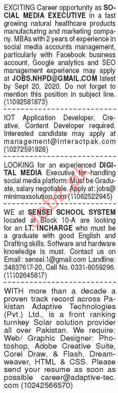 Dawn Sunday Classified Ads 13 Sep 2020 for Computer Staff