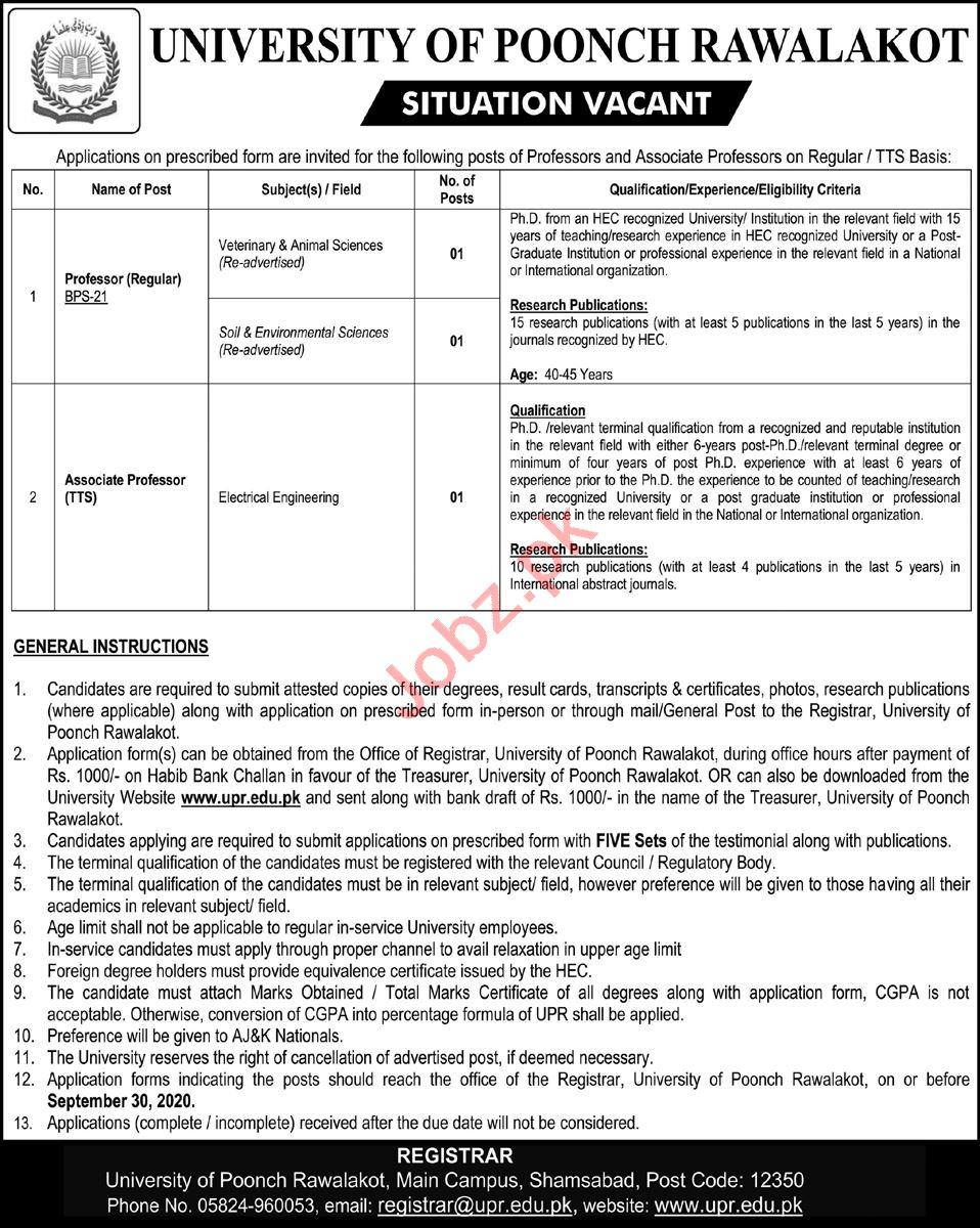 University of Poonch Rawalakot Jobs 2020 for Professor