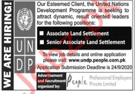 Senior Associate Land Settlement Jobs 2020 in UNDP