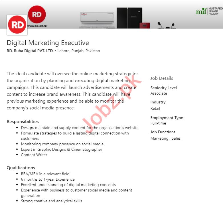 Ruba Digital Lahore Jobs 2020 Digital Marketing Executive