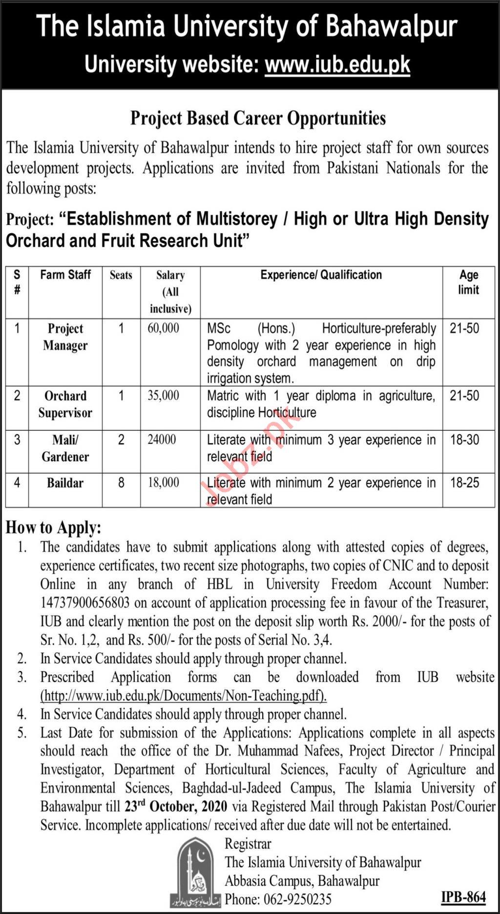 Ultra High Density Orchard & Fruit Research Unit BZU Jobs