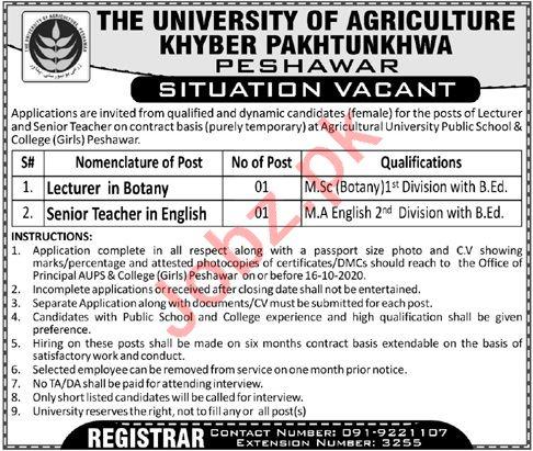 Agricultural University Public School & College Girls Jobs