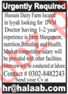 Hussain Dairy Farm Layyah Jobs 2020 for DVM Doctor